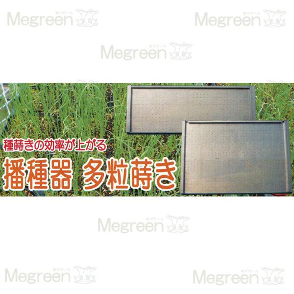 播種器 多粒蒔き 20角穴トレー 2×5 16粒 鎮圧板付 直径3.2mm メグリーン タ種D