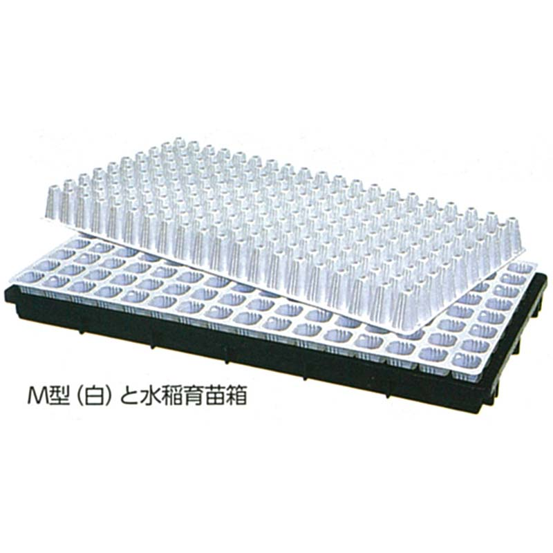 タキイ 根巻防止 セルトレイM型 白 200穴 10×20列 100枚入り 300×590mm プラグトレイ タ種D