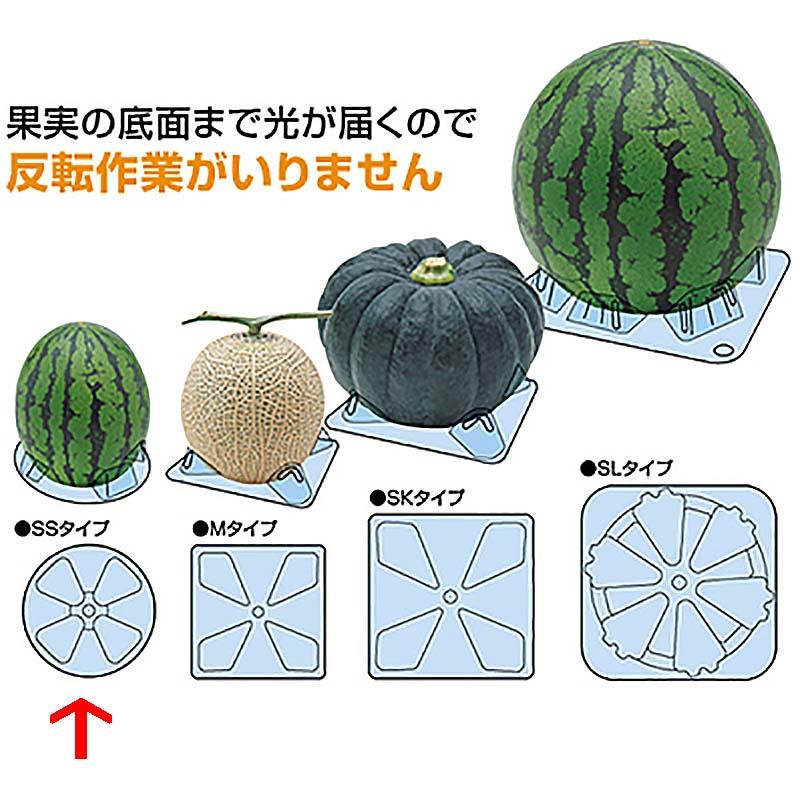 シンエツマットSS 小玉西瓜用 直径115×H25 2,000枚 スイカ タ種【代引不可】