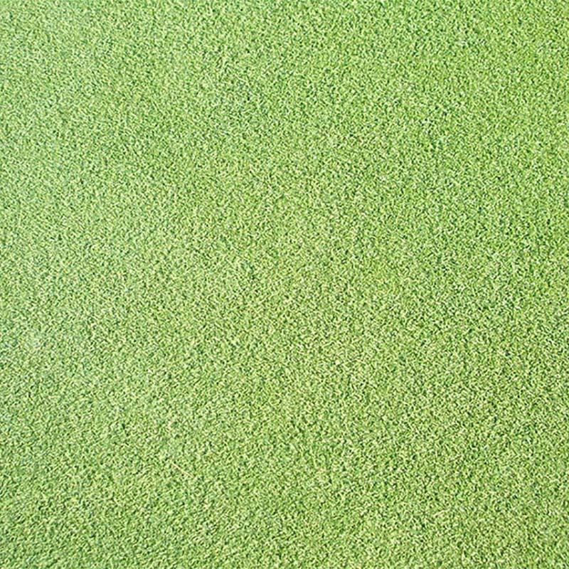 【種 1kg】 ベントグラス CY-2 シーワイツー コート種子 芝生用 緑肥 [播種期:3~10月] 雪印種苗 米S【代引不可】
