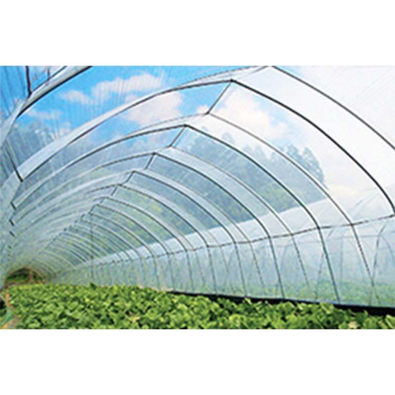 人気定番 晴天ビニール 農ビ 厚さ0.1mm 幅470cm 長さ20m ビニールハウス 外張り用 農業用ビニールフィルム 防霧滴汎用タイプ アキレス カ施, DRAGON'S WAY 8d744454