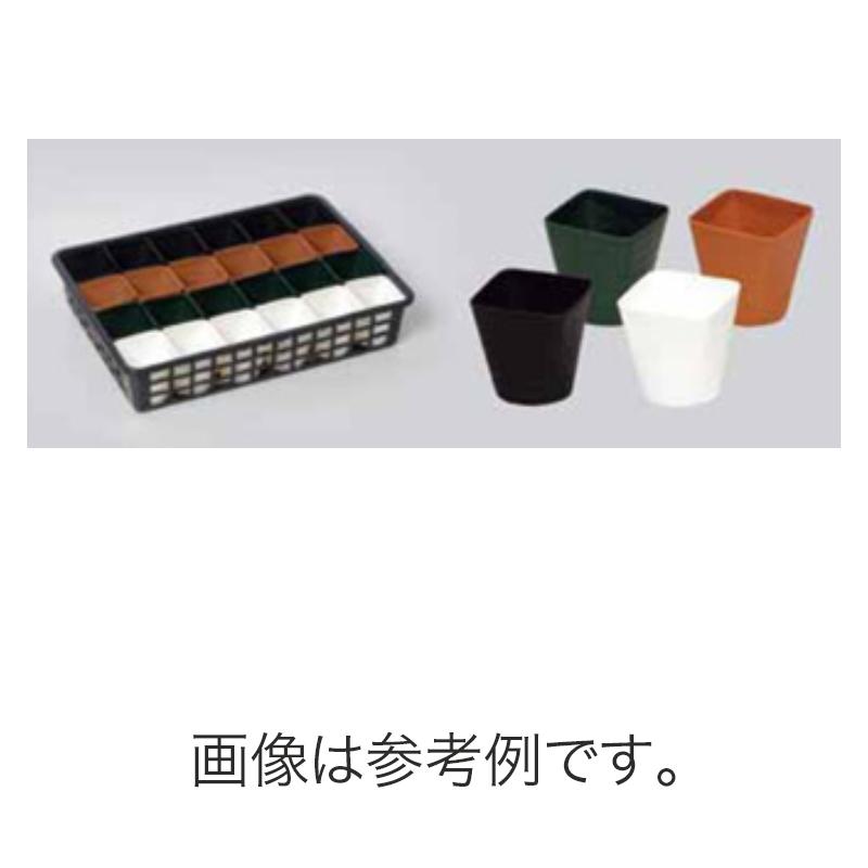 【北海道配送不可】【800個】 #1471 プラスチックポット JB24 3.5寸 茶 外径108mm 高さ90mm 鉢 明和 明W 【代引不可】