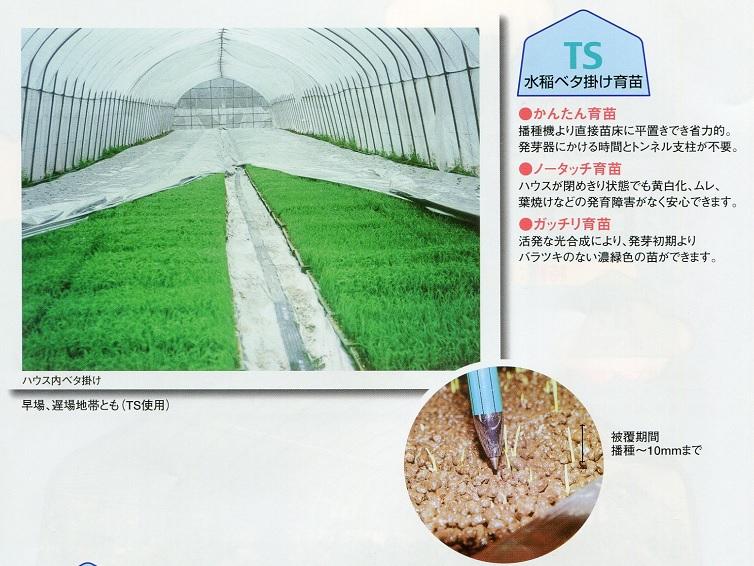 【特注】【 2×30m 】 内張 TS 太陽 光反射 シート ピアレスフィルム 水稲 育苗 べた掛け カ施【代引不可】