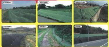 【北海道発送不可】雑草抑制おまかせネット 幅4m×25m巻 (グリーン) 大一工業【代引不可】