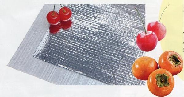 【2本】 ネオポリシャインクロスT87 有穴 さくらんぼ・柿用 0.1mm厚×1.5m×50m 日立化成 カ施【代引不可】