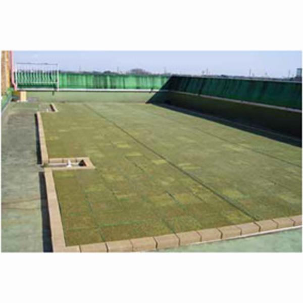 コケ緑化システム コケユニット 500×500mm 4枚セット 【モス山形】屋上のコケユニット緑化