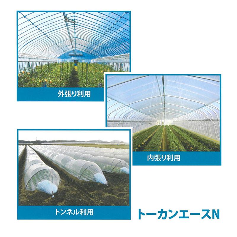 【1本】 0.05mm厚 300cm幅 100m トーカンエースN 農PO 透明 ダブル巻 東罐興産 カ施【代引不可】