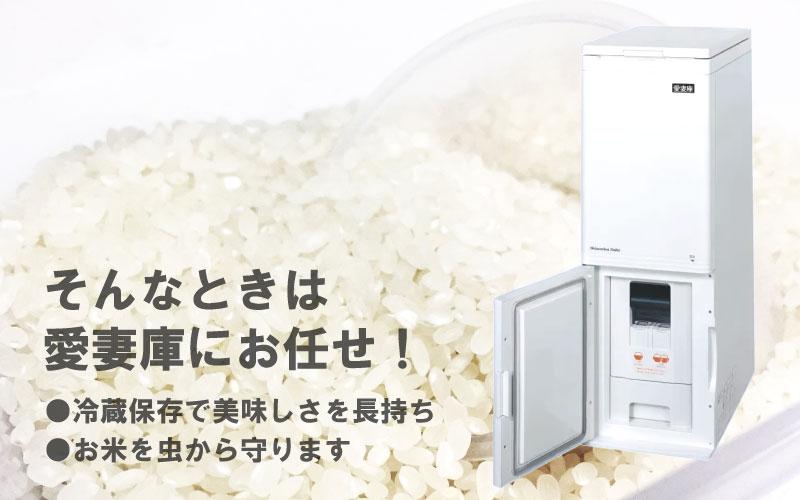 冷蔵 米びつ