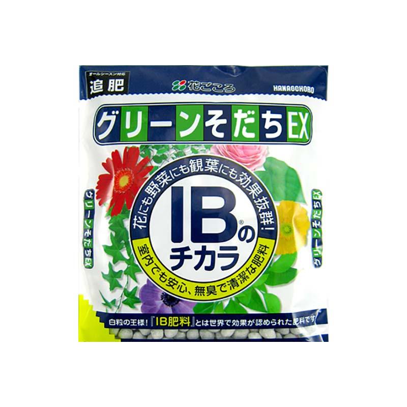 【90個】 花ごころ IBのチカラ グリーンそだちEX 80g 追肥 観葉植物 草花 野菜 肥料 タ種 【代引不可】