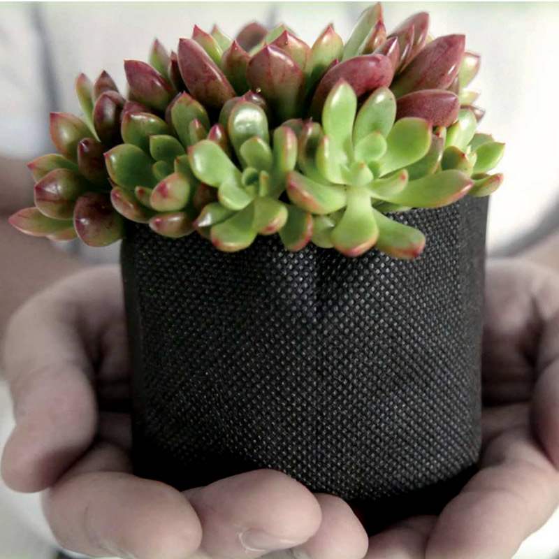 個人宅配送不可 4000個 ボタニカルポット 105 ブラック 日本ポリ鉢販売 105 × 90 BOTANICAL POT 鉢 不織布 エコ 植物由来 タ種 送料無料 代引不可