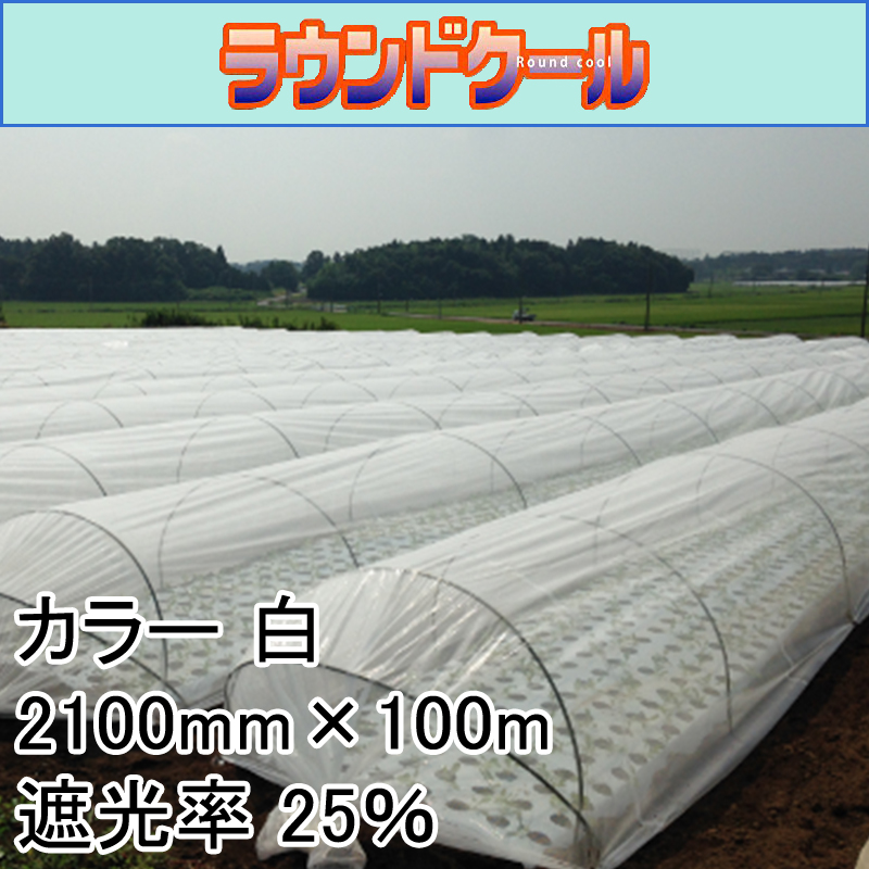 2100mm × 100m 白 遮光率25% ラウンドクール 遮光ネット 寒冷紗 JX ANCI タ種 【送料無料】 【代引不可】