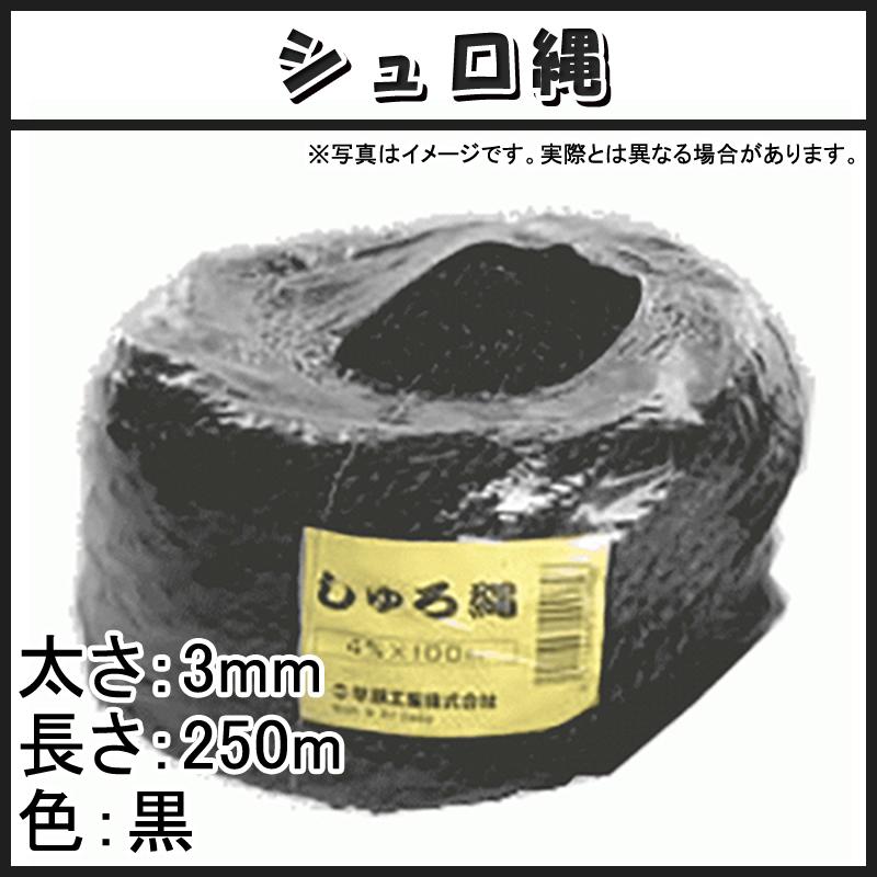 【12玉】 シュロ縄 黒 3mm × 250m 2本出し 早S【代引不可】