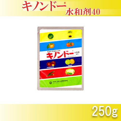 永遠の定番 病害防除剤 有機銅水和剤 5個 定番から日本未入荷 キノンドー水和剤40 250g 送料無料 農薬 イN 殺菌剤 代引不可