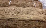 【20枚】 こも むしろ 冬支度の こも巻き ( こもまき 菰巻き )に 門松作りに 最適 シN直送