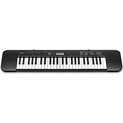 【送料無料】CASIO CTK-240 電子キーボード(49鍵盤)【在庫目安:お取り寄せ】