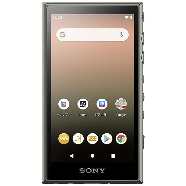 【送料無料】SONY(VAIO) NW-A106/G ウォークマン Aシリーズ 32GB アッシュグリーン【在庫目安:お取り寄せ】