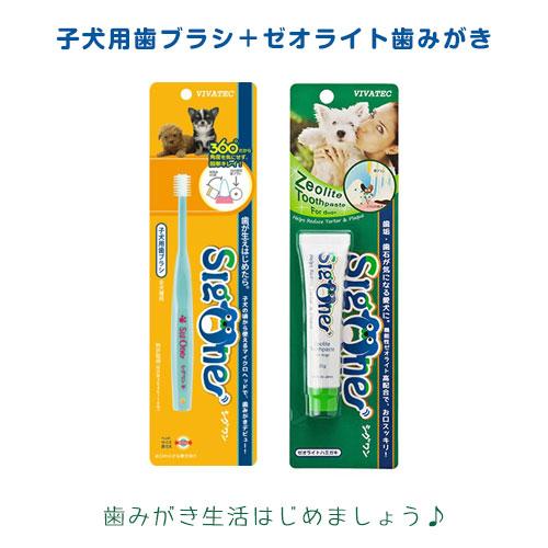Cygwin 的小狗 (小口) + zeolitehamigaki ○ 牙刷