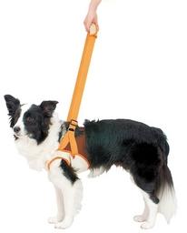 『500円クーポン配布中』  PETIO 老犬介護用 歩行補助ハーネス 前足用 2L ○