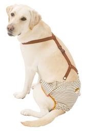 『500円クーポン配布中』 PETIO 老犬介護用 おむつパンツ 3L ○