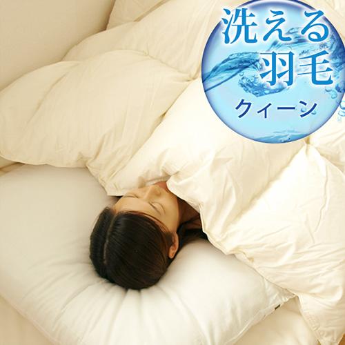 エクセルゴールドラベル ダックウォッシャブル羽毛布団 クィーン 送料無料 【 布団 】【smtb-F】