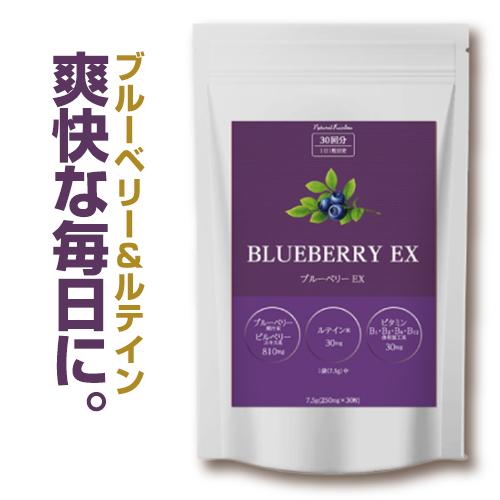 ブルーベリー サプリ ルテイン ビルベリー 安心の実績 高価 買取 強化中 ブルーベリーEX サプリメント お中元 30粒