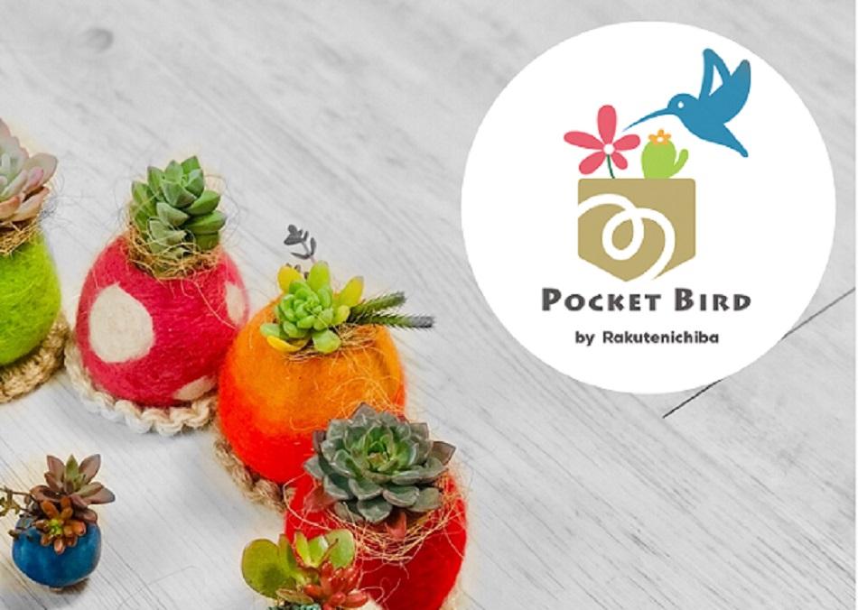 Pocket Bird:手間のかからない多肉植物を活かし、緑をお届けします。