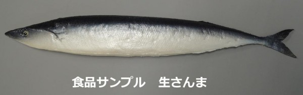日本職人が作る 食品サンプル 生さんま IP 500