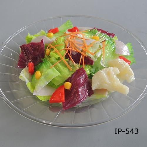 日本職人が作る 食品サンプル サラダ IP 543
