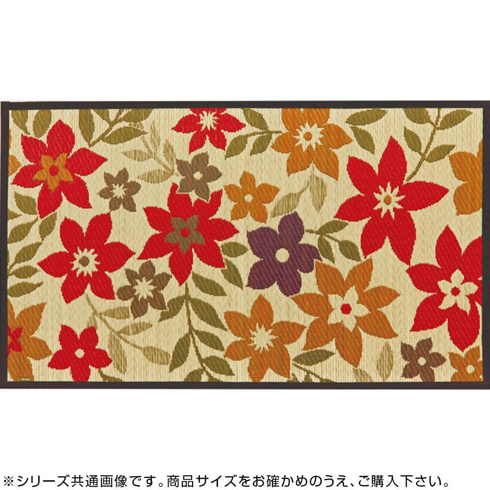 国産い草玄関マット 裏貼り ラプソディー 約70×120cm 29008503