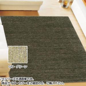 アスワン ムシカビクリーンカーペット 防虫・防ダニ・防カビ・抗菌 MC-100 130×190cm GN・グリーン CA606135