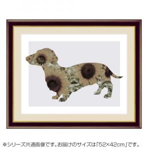 アート額絵 山口 美咲 やまぐち みさき Sun Flower G4-CJ003 52×42cm