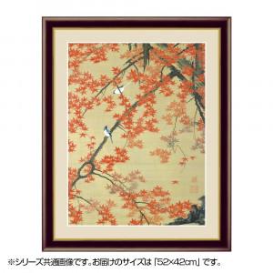アート額絵 伊藤若冲 紅葉小禽図 G4-BN074 52×42cm
