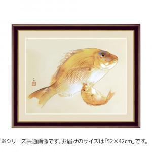 アート額絵 竹内栖鳳 海幸 G4-BN045 52×42cm