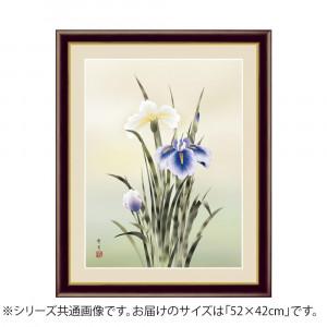 アート額絵 北山歩生 菖蒲 G4-BK075 52×42cm