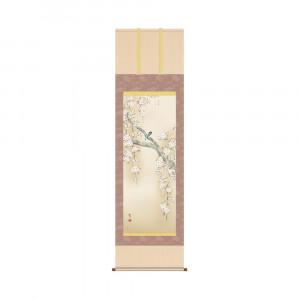 掛軸 森山観月 桜花に小鳥 KZ2A2-085 54.5×190cm