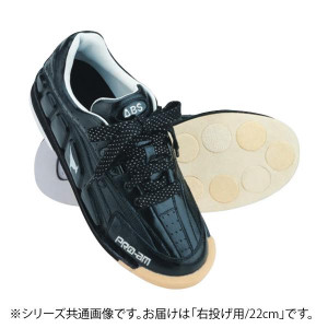 ABS ボウリングシューズ カンガルーレザー ブラック・ブラック 右投げ用 22cm NV-3