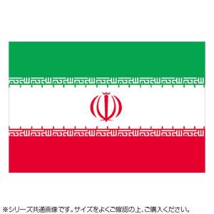 N国旗 イラン No.1 W1050×H700mm 22875
