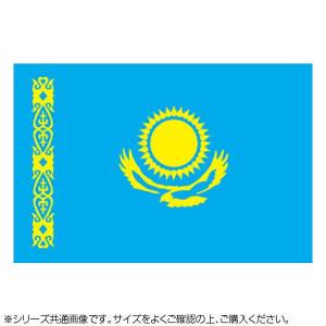 N国旗 カザフスタン No.1 W1050×H700mm 22943