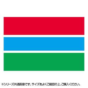 N国旗 ガンビア No.2 W1350×H900mm 22976