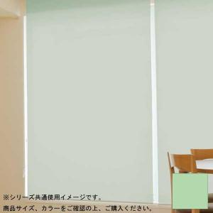 タチカワ ファーステージ ロールスクリーン オフホワイト 幅100×高さ200cm プルコード式 TR-179 ミントクリーム
