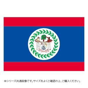 N国旗 ベリーズ No.2 W1350×H900mm 23424