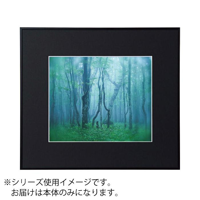 Kenko ケンコー トキナー アルミ額縁 ギャラリー A4スクエア ブラック AGY-A4SQ-BK:PocketCompany 店