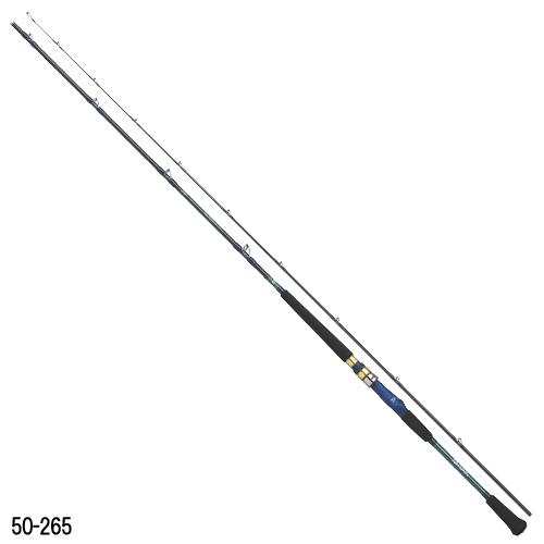 ダイワ アナリスター 64 80-265