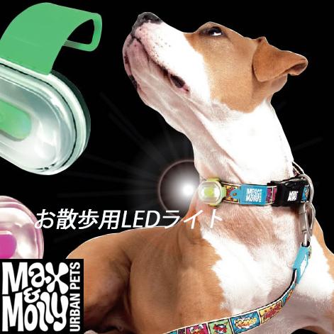 お散歩用LEDライト【USB充電式ケーブル付】