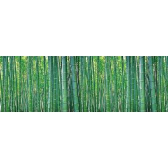 竹幕(腰幕) | ビニール幕 竹(写真)[高さ60cm×50M巻]