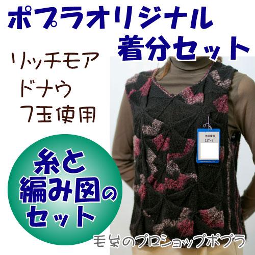【秋冬】ドナウベスト【中級者】【編み物キット】