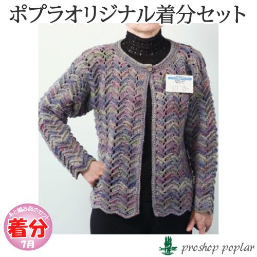 【秋冬】ジグザグ模様のカーディ【中級者】【編み物キット】