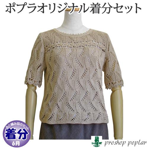 【春夏】ボーダーヨークのレースプル【中級者】【編み物キット】