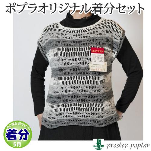 【春夏】波紋プルオーバー【中級者】【編み物キット】