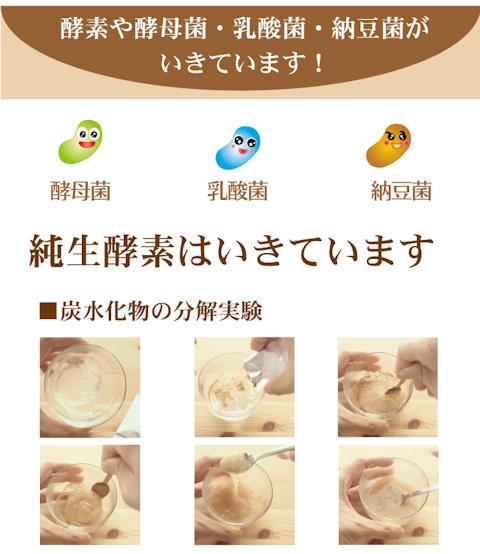 純生酵素6箱セット【送料無料】//乳酸菌、酵母菌、納豆菌入/活きている酵素